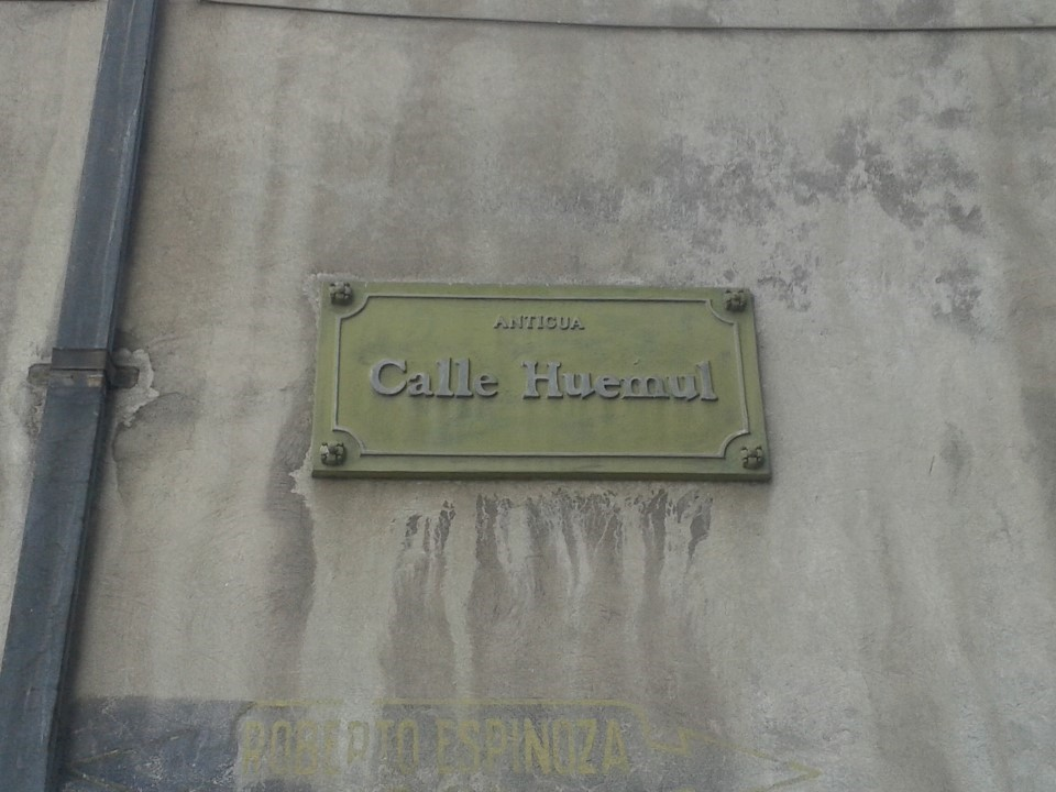 Calle Huemul - Roberto Espinoza