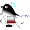 El lanzamiento del Pingüino